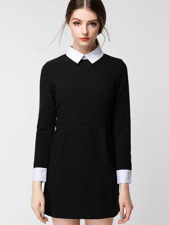 Peterpan contrast collar zipper suiting colorblock back for Dress shirt collar fit