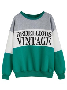 Color Block Letters Print Dropped Shoulder Seam Sweatshirt