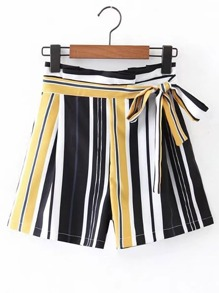 Bow Tie Waist Vertical Striped Shorts